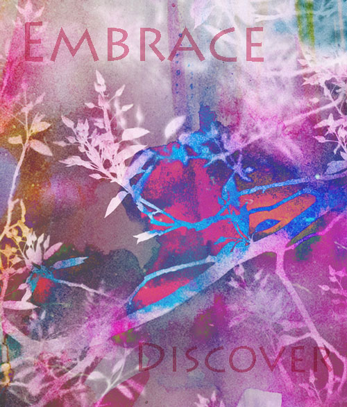 Embrace_discover