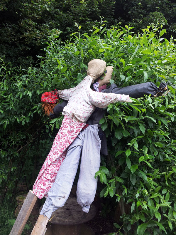 Scarecrowcouple